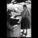 Cooking  thumbnail