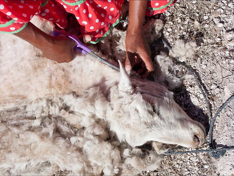 Weaving Photo 4
